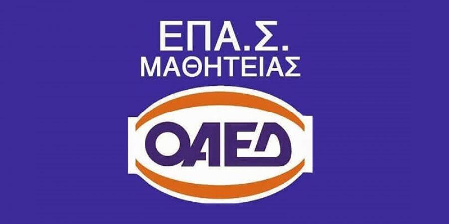 Στις 18 Μαΐου η επαναλειτουργία των ΕΠΑΣ Μαθητείας και ΙΕΚ ΟΑΕΔ ...